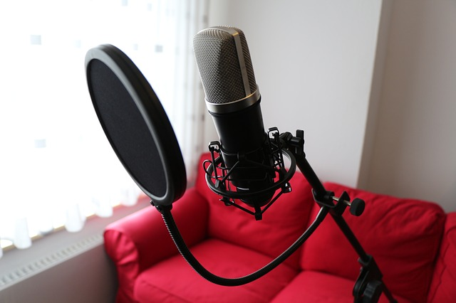 microphone-541192_640
